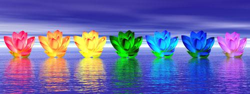 chakra_flowers_sml