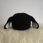 newborn-black_sheep