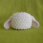 newborn-sheep
